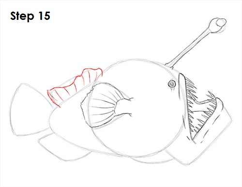 Draw Anglerfish 15