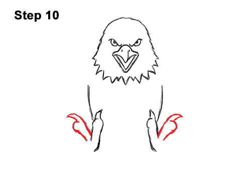How to Draw Angry Cartoon Bald Eagle Flying Wings Talons 10