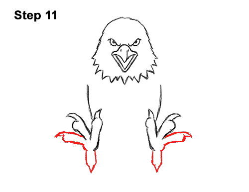 How to Draw Angry Cartoon Bald Eagle Flying Wings Talons 11