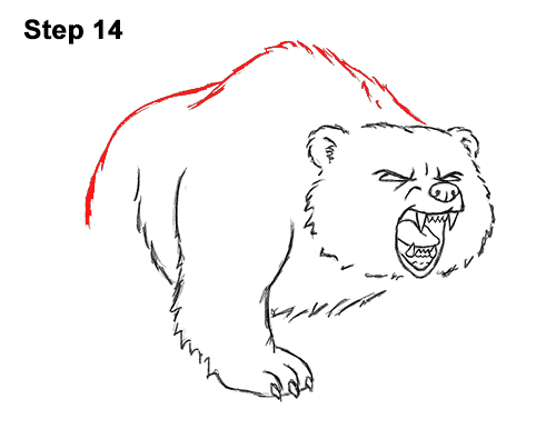 Draw Angry Mean Growling Roaring Cartoon Bear 14