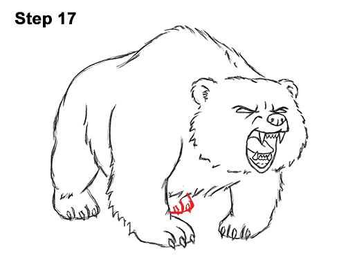Draw Angry Mean Growling Roaring Cartoon Bear 17