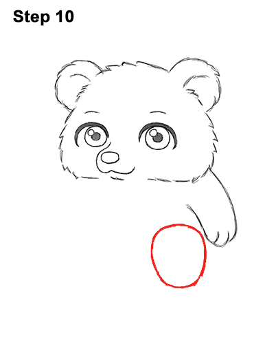 How to Draw a Cute Little Mini Chibi Cartoon Brown Bear Cub 10