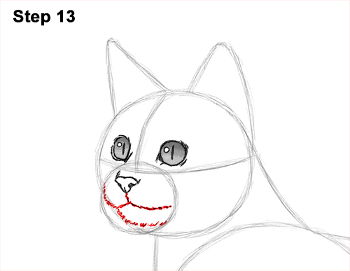 How to Draw Bengal Kitten Cat Spots 13