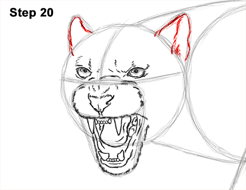 How to Draw an Angry Black Panther Roaring 20