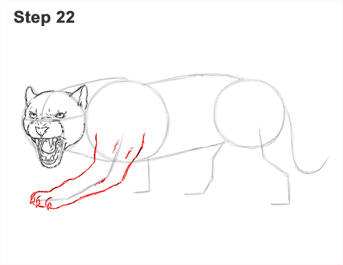 How to Draw an Angry Black Panther Roaring 22