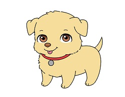How to Draw a Cartoon Puppy Dog Retriever
