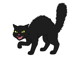How to Draw a Cat Cartoon Black Angry Halloween
