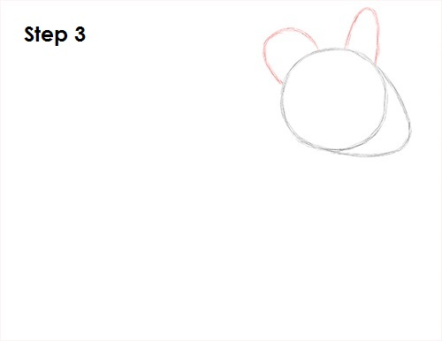 Draw Chinchilla 3