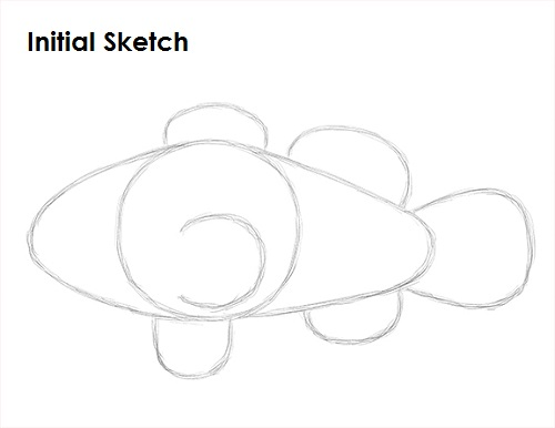 Draw Clownfish Sketch