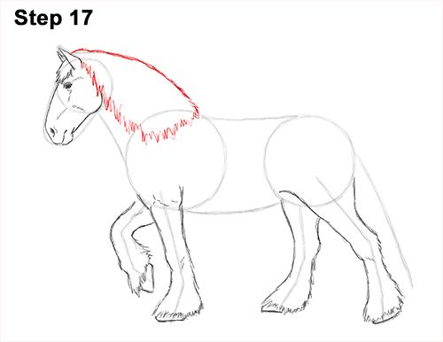Draw Horse Clydesdale Shire 17