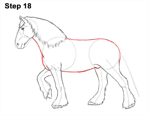 Draw Horse Clydesdale Shire 18