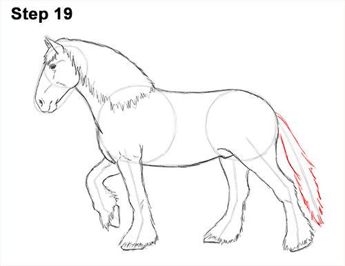 Draw Horse Clydesdale Shire 19