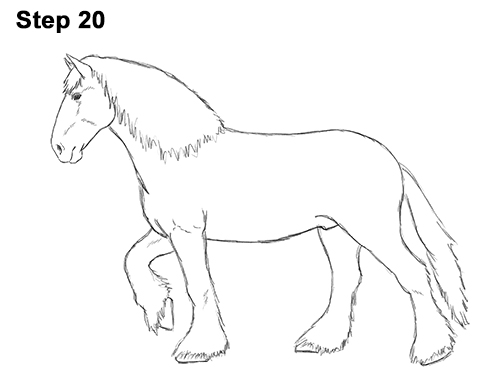 Draw Horse Clydesdale Shire 20