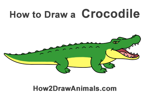 How to Draw Angry Cartoon Crocodile Alligator Smile