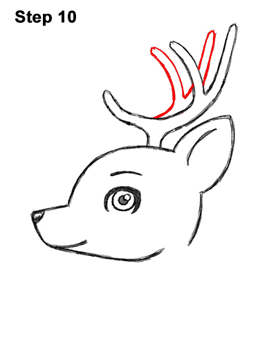 How To Draw Deer Horns Step By Step