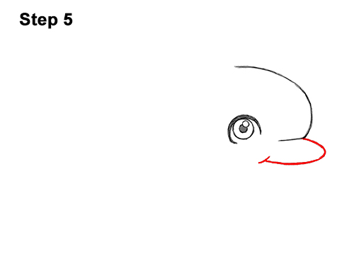 How to Draw Cute Cartoon Dolphin 5