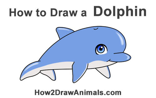 How to Draw Cute Cartoon Dolphin