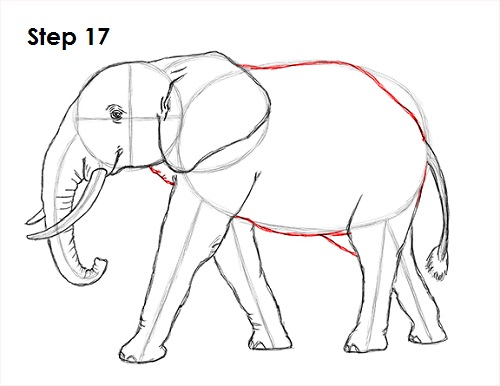 how to draw an elephant, coloring pages