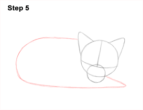 How to Draw Cute Red Fox Sleeping Asleep 5