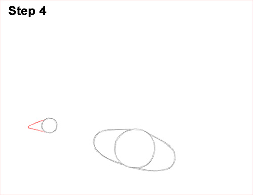 How to Draw Canadian Goose Flying Wings 4