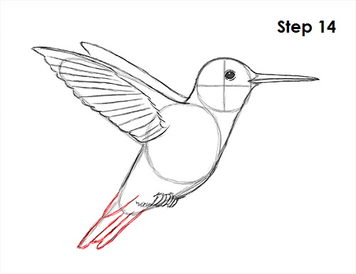 how to draw a simple dove