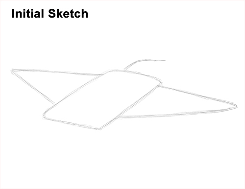 How to Draw Giant Oceanic Manta Ray Guide Lines