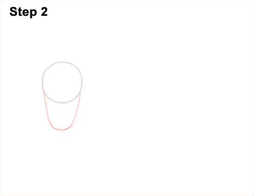 How to Draw Musk Ox Standing Horns 2