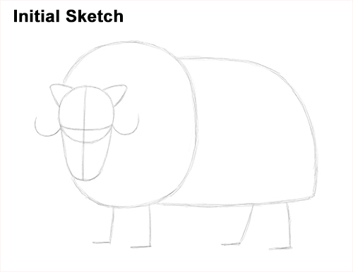How to Draw Musk Ox Standing Horns Initial Sketch