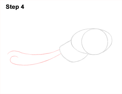 How to Draw an Octopus Swimming Tentacles 4