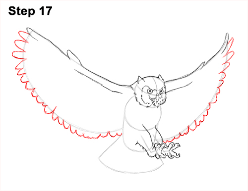 How to Draw a Great Horned Owl Flying Hunting Wings 17