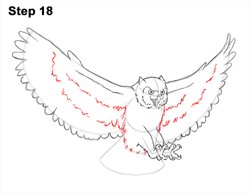 How to Draw a Great Horned Owl Flying Hunting Wings 18