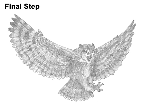 How to Draw a Great Horned Owl Flying Hunting Wings