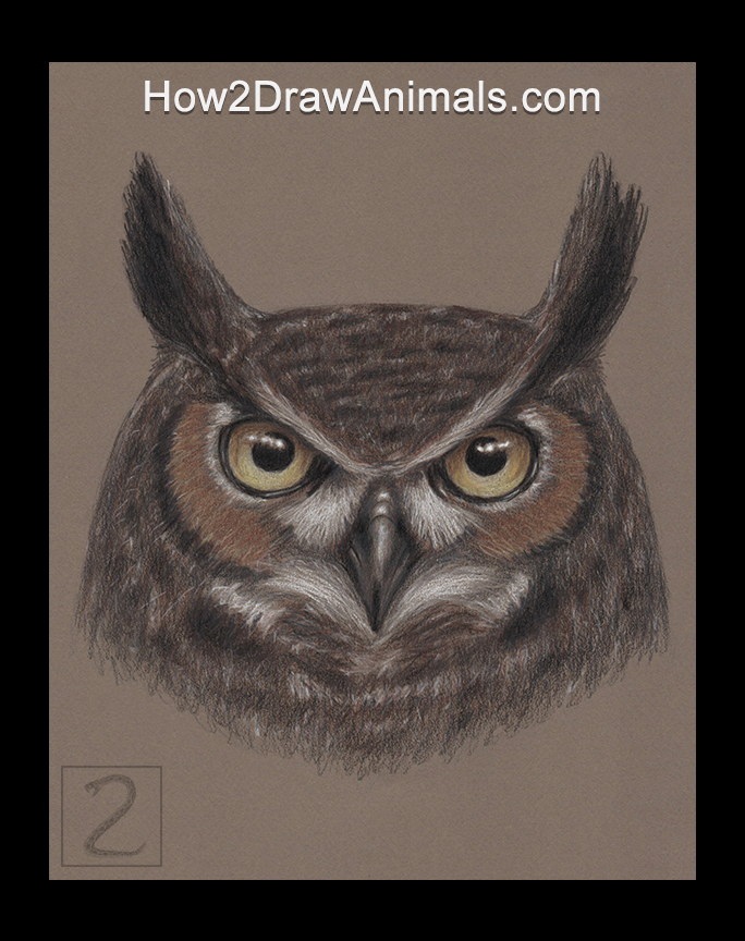 Great Horned Owl Portrait Drawing