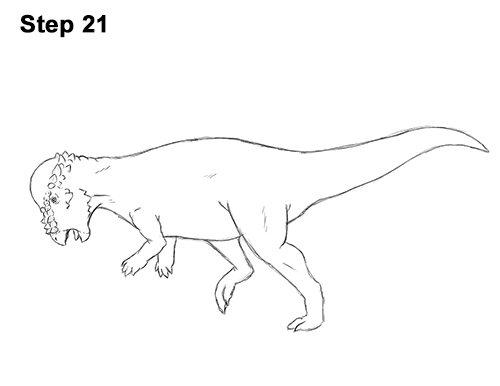How to Draw Running Charging Pachycephalosaurus Dinosaur 21
