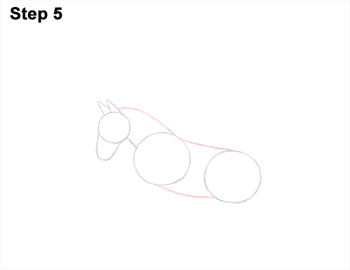 Draw Pegasus Horse Wings 5