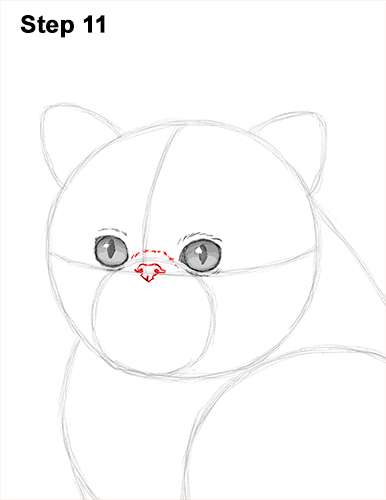 Draw Persian Kitty Cat 11