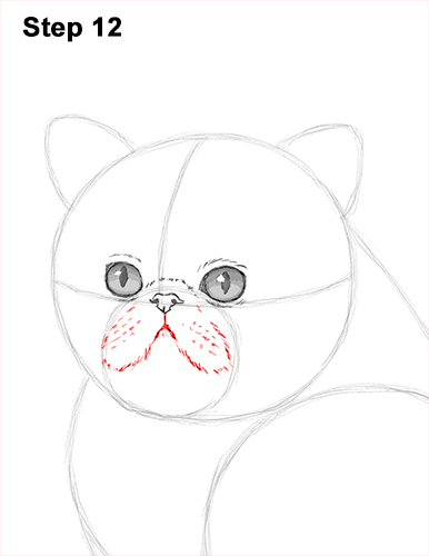 Draw Persian Kitty Cat 12