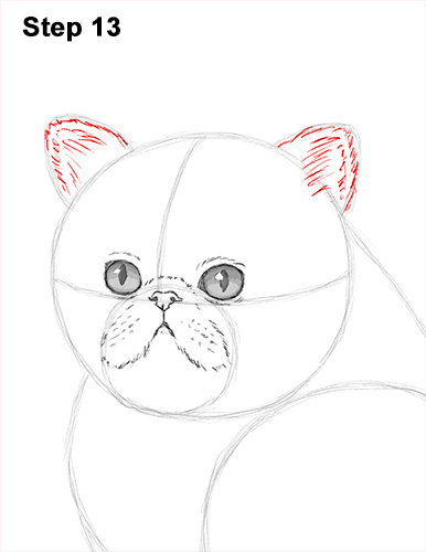 Draw Persian Kitty Cat 13