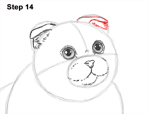 How to Draw a Scottish Fold Cat Playing Pawing Swiping 14