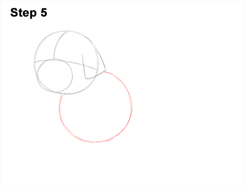 How to Draw a Cute Shih Tzu Puppy Dog 5