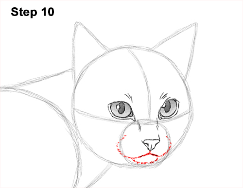Draw Siamese Cat 10