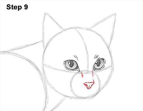 Draw Siamese Cat 9