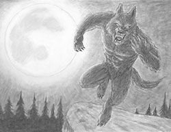 Special Drawing Werewolf Moon