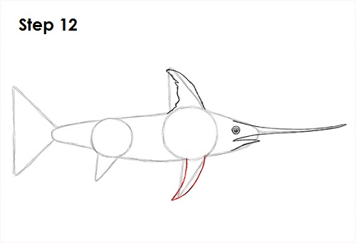 Draw Swordfish 12