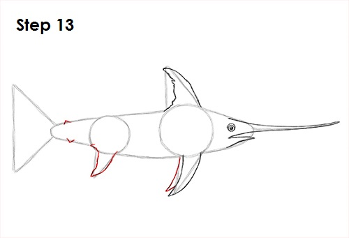 Draw Swordfish 13