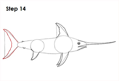 Draw Swordfish 14