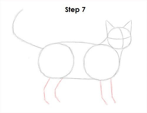 Draw Tabby Cat 7