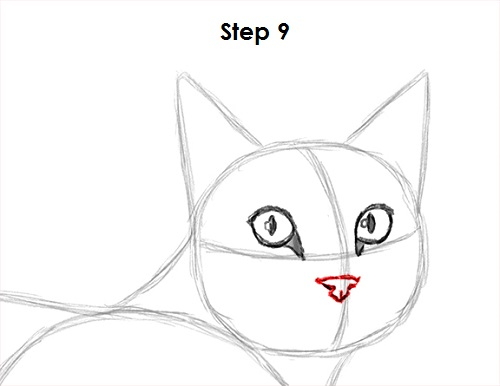 Draw Tabby Cat 9