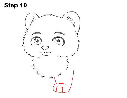 Draw Cartoon Mini Little Tiger Cub 10