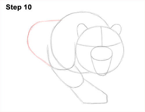 How to Draw a Mean Tiger Roaring Growling Stalking 10